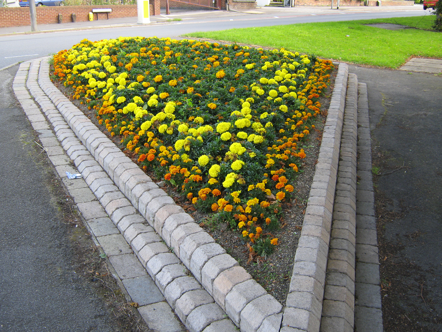 flower-bed-provided-by-broxtowe-borough-council