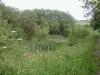 Nottm Canal wildlife area